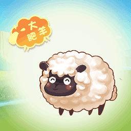 天天來放羊