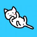 我和猫猫的生活