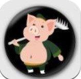掌上养猪领红包版