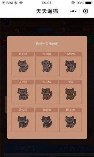天天遛猫红包版