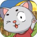 猫猫涨芝士