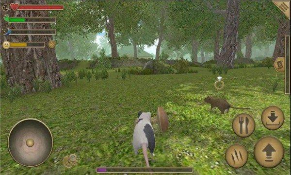 老鼠模拟生存游戏