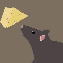 奔跑的老鼠