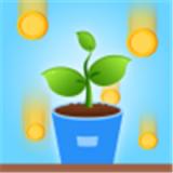阳光森林app