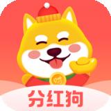 狗狗世界app