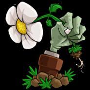 植物大战僵尸花园战争1