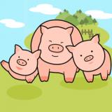 猪猪来了红包版