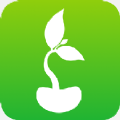 豆芽轉app