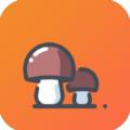 小蘑菇兼职网
