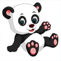 我要养熊猫