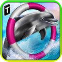 海豚比赛3D