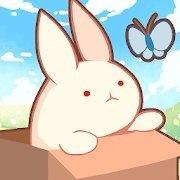 箱子的兔子