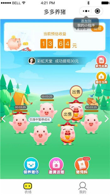 多多养猪场