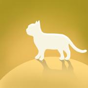 猫咪世界app