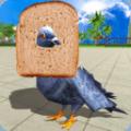 鸽子鸟模拟器