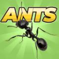 口袋蚂蚁模拟器