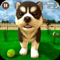 虚拟小狗模拟器