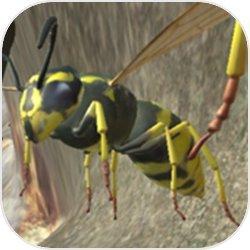 黃蜂巢模擬器3D