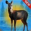 免費獵鹿3D