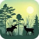 森林动物模拟器破解版