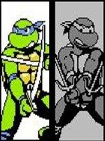 忍者神龟330命版