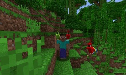 我的世界长尾小鹦鹉mod游戏截图