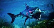 关于鲨鱼的手机游戏大全