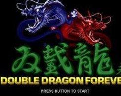 双截龙格斗游戏