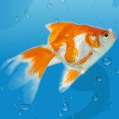 水上生活3D