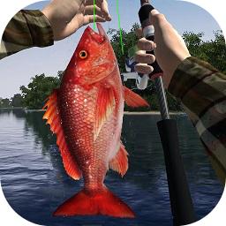 钓鱼大师3D