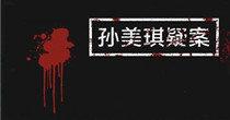 孙美琪疑案游戏大全