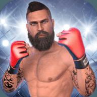 MMA格斗冲突修改版