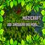 我的世界MeziCraft8