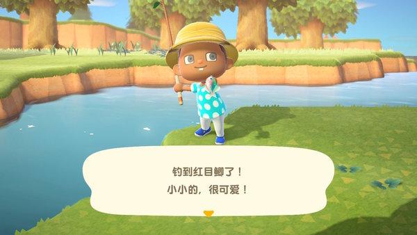 动物之森中文版手机版最新下载-动物之森中文版手机版汉化版
