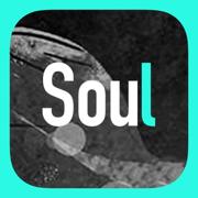 soul破解版2021