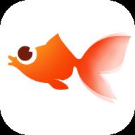 火鱼快讯app