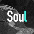 soul2021破解版