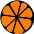 橙子资源网
