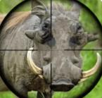 野外猎猪狙击手