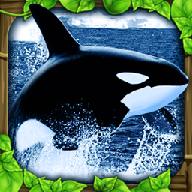 虎鲸模拟器