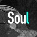 soul国际版