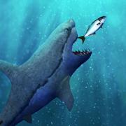 饥饿的鲨鱼生存evo