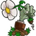 植物大战僵尸tf版本