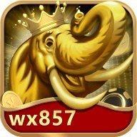 万象国际wx857