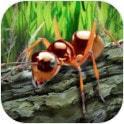 螞蟻荒野生存模擬